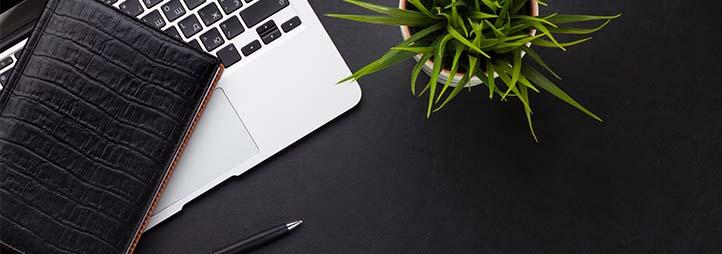 laptop, carnet de notes, plume et plante sur une table