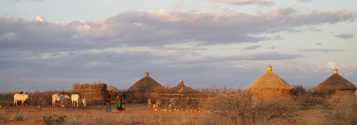 Field in Africa