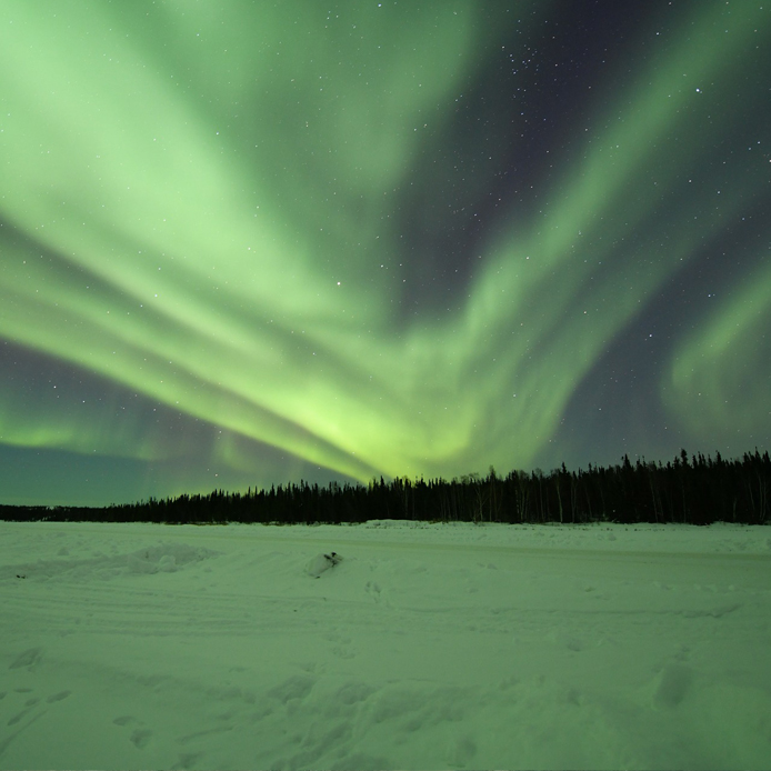 Northern lights in arctic landscape