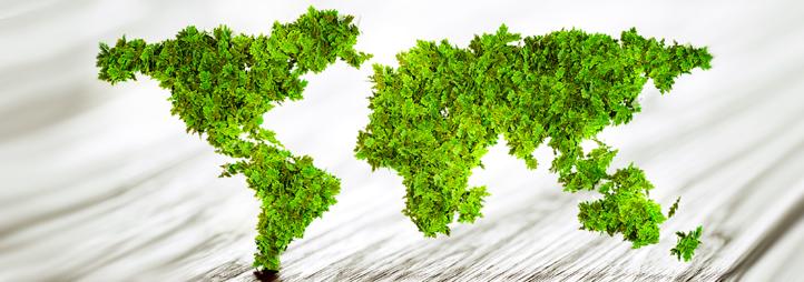 pays internationaux construits avec des feuilles vertes