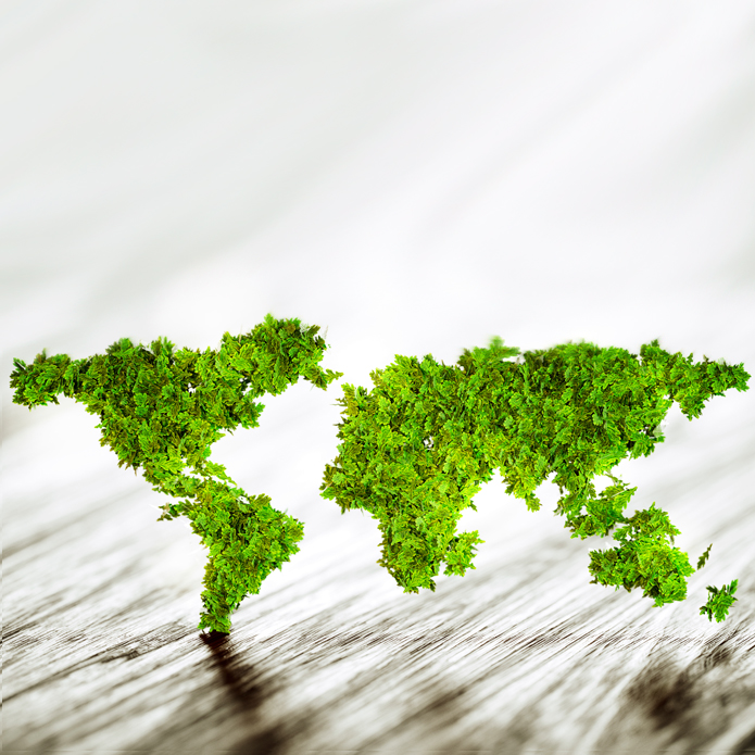 international countries made of green leaves