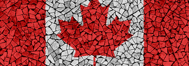 canadian flag mosaic made with wooden logs
